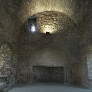 Hall with arched ceiling and big fire place