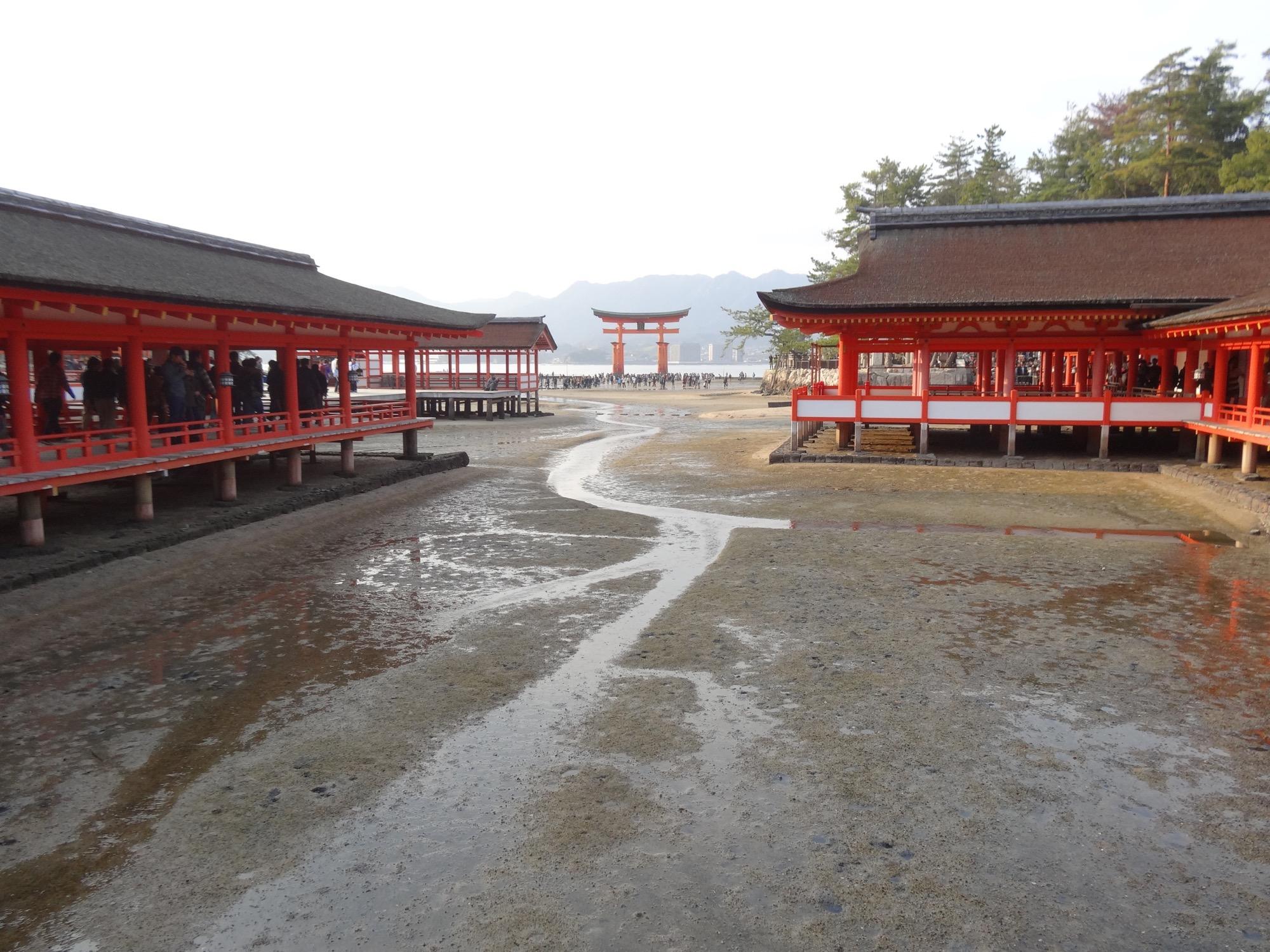Torii gate at Itsukushima shrine